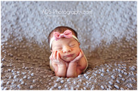 """Central Texas"" Newborn Photography pose Belton Temple ""ADS Photography"" baby"
